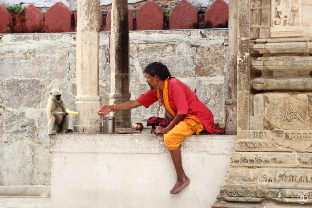 templo de jagdish udaipur