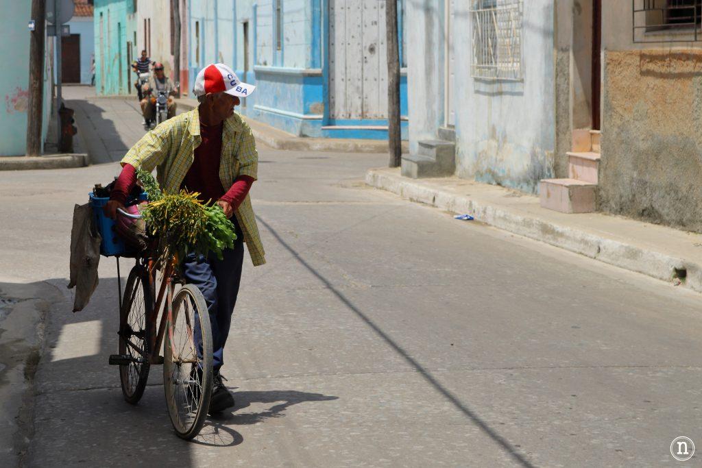 escena cotidiana camagüey