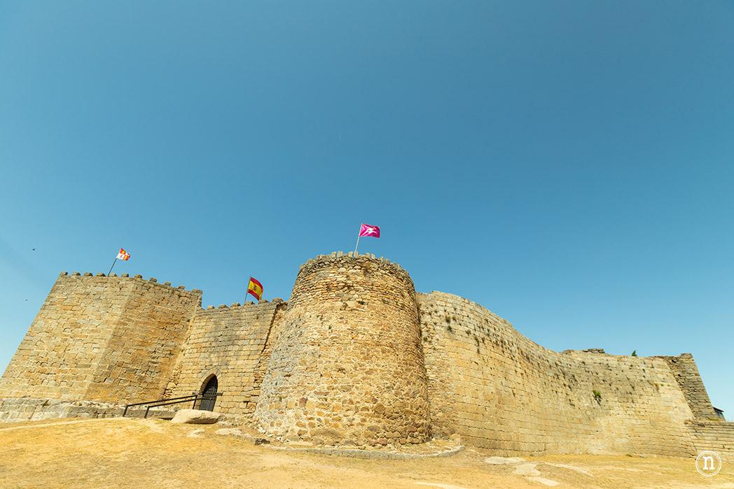 Ledesma castillo