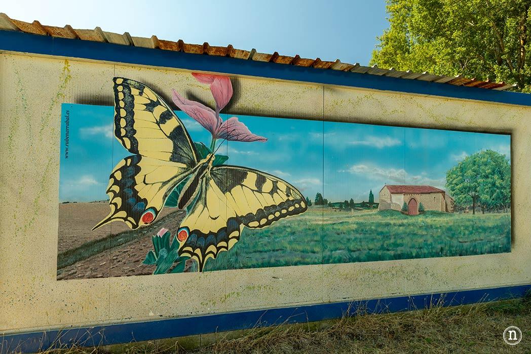 ruben arrabal mariposa