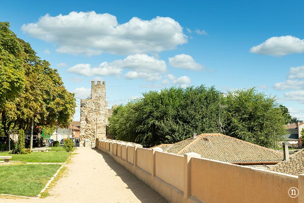 muralla medieval de coca