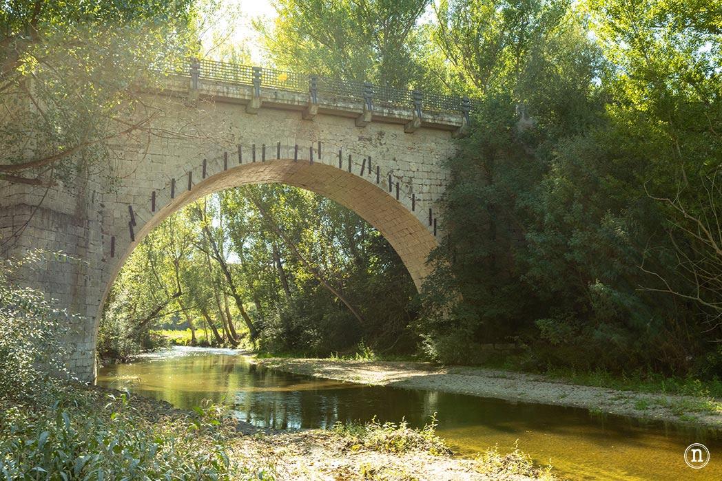 Puente Grande Coca